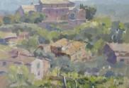 Tuscan Hillside Vineyard